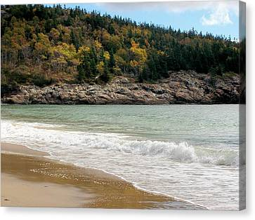 Canvas Print featuring the photograph Acadia National Park by Gene Cyr