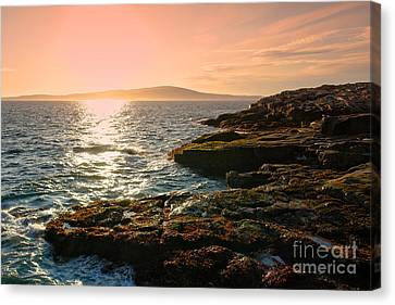 Acadia National Park Canvas Print by Olivier Le Queinec