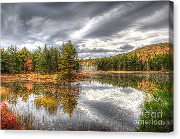 Canvas Print featuring the photograph Acadia With Autumn Colors by Wanda Krack