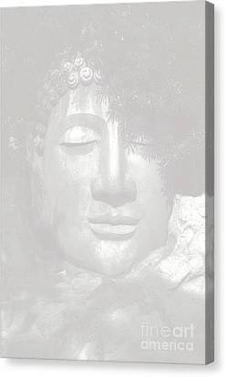 Access To Insight  Canvas Print by Vineesh Edakkara