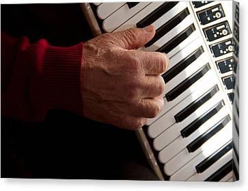 Accordion Man Canvas Print by Odd Jeppesen