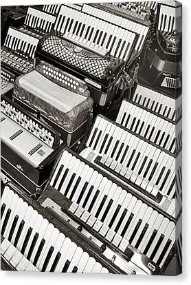 Canvas Print featuring the photograph Accordions by Mary Lee Dereske