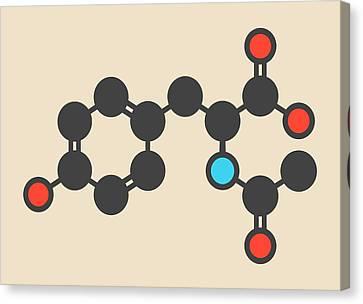 Acetylated Molecule Canvas Print by Molekuul
