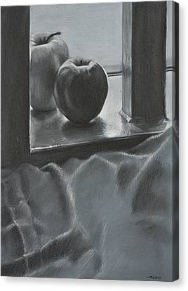 Achromatic Red And Green Canvas Print by Christopher Reid