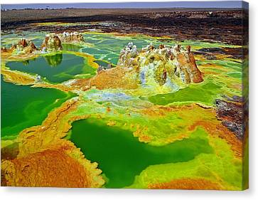 Acid Lakes Of Dallol Volcano Canvas Print by Liudmila Di