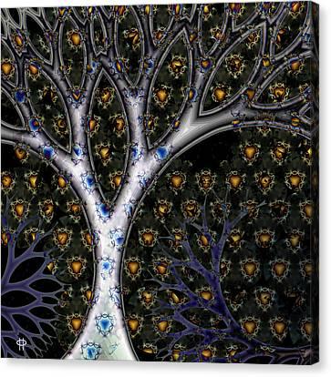 Acorn Fireflies Canvas Print by Jim Pavelle