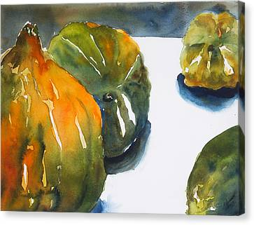 Acorn Squash Canvas Print by Tom Simmons