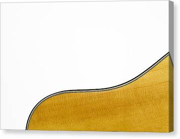 Acoustic Curve Canvas Print by Bob Orsillo