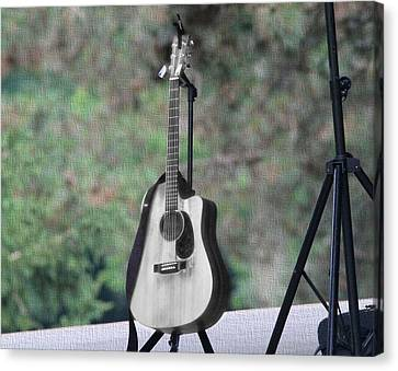 Acoustic Guitar Outside Concert Canvas Print by Dan Sproul