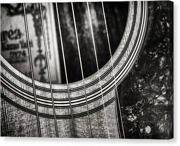 White Pearl Canvas Print - Acoustically Speaking by Scott Norris