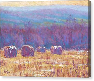 Across Dunn Valley Canvas Print by Michael Camp