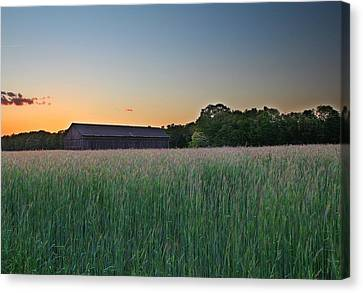 Across The Field Canvas Print by Andrea Galiffi