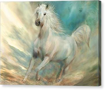 Across The Windswept Sky Canvas Print by Carol Cavalaris
