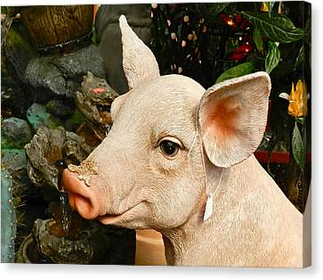 Acrylic Pig At Discount Canvas Print by Ion vincent DAnu
