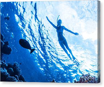 Active Woman Diving Canvas Print by Anna Om