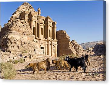 Ad Deir, Petra, Jordan Canvas Print by Adam Sylvester