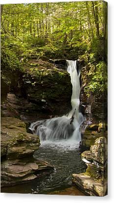 Adams Falls 0348 Canvas Print