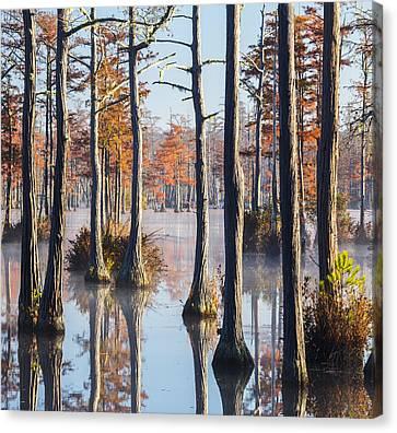 Adams Mill Pond 54 Canvas Print