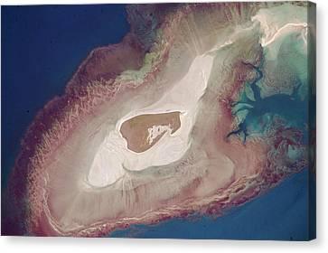 Adele Canvas Print - Adele Island by Nasa