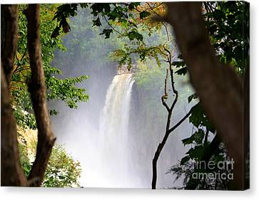 Adirondacks Waterfall Canvas Print by Patti Whitten