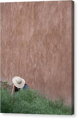 Adobe Gardener Canvas Print by Heidi Hermes