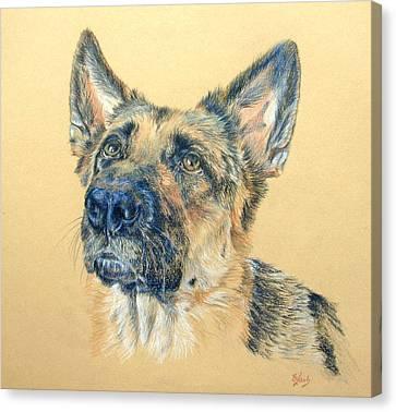 Working Dog Canvas Print - Adoring by Liz  Lamb