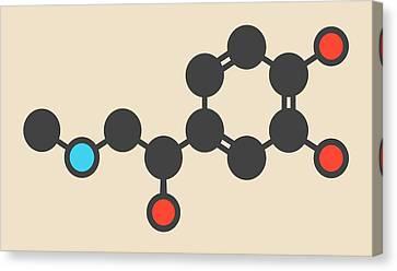 Adrenaline Molecule Canvas Print by Molekuul