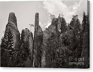 Adrspach Rocks - Czech Republic Canvas Print by Martin Dzurjanik
