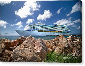 Adventure Of The Seas Canvas Print by Amy Cicconi