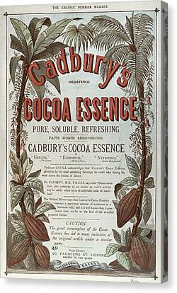Advertisement For Cadburs Cocoa Essence From The Graphic Canvas Print by English School