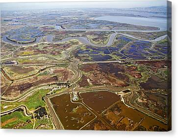 Aerial Of The California Delta Canvas Print