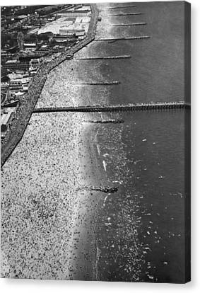 Aerial View Of Coney Island Canvas Print by Underwood Archives