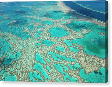 Aerial View Of The Great Barrier Reef Canvas Print by Peter Adams