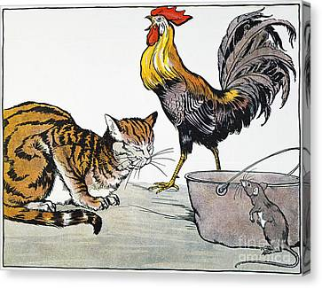 Aesop: Cat, Cock, And Mouse Canvas Print by Granger