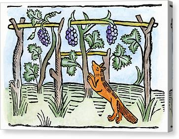 Aesop The Fox & The Grapes Canvas Print