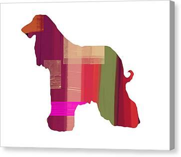 Afghan Hound 2 Canvas Print