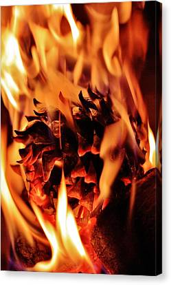 Aflame Canvas Print by Benjamin Yeager
