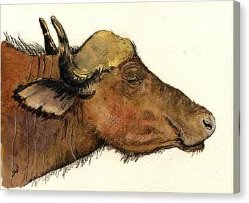 African Buffalo Head Canvas Print by Juan  Bosco