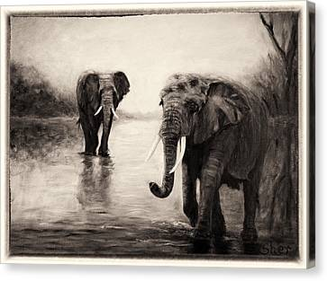 African Elephants At Sunset Canvas Print by Sher Nasser