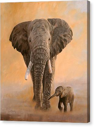 Sunrise Canvas Print - African Elephants by David Stribbling