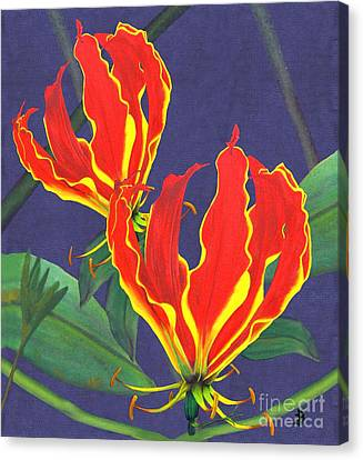 African Flame Lily Canvas Print by Sylvie Heasman
