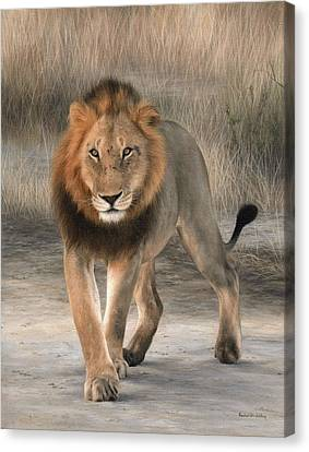African Lion Painting Canvas Print by Rachel Stribbling