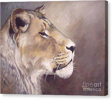 African Lioness On Alert Canvas Print by Suzanne Schaefer