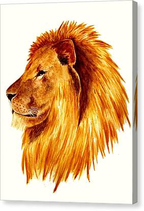 African Male Lion Canvas Print by Michael Vigliotti