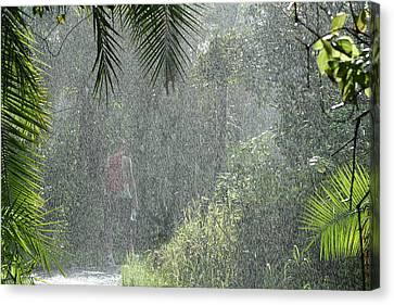 African Rain Canvas Print
