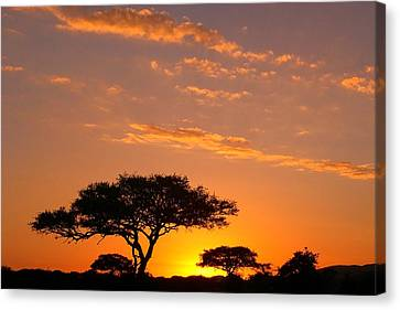 Canvas Print featuring the photograph African Sunset by Sebastian Musial