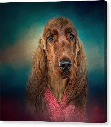 After A Swim - Irish Setter - Dog Art Canvas Print
