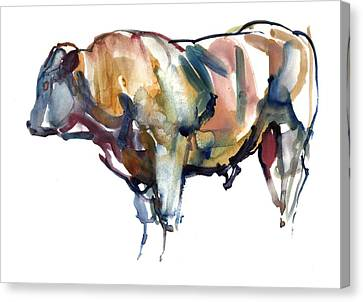 Cow Canvas Print - After Sunset by Mark Adlington