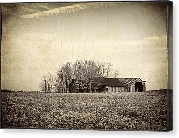 After The Harvest Canvas Print by Jeff Burton