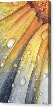 After The Rain Canvas Print by Carol Warner